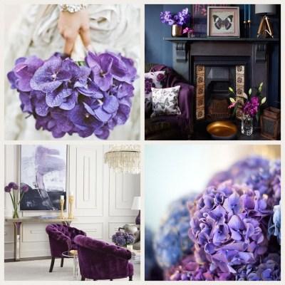 Ultra Violet Home Inspiration