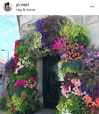 Chelsea in Bloom 2018