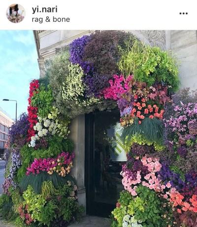 Chelsea in Bloom 2018
