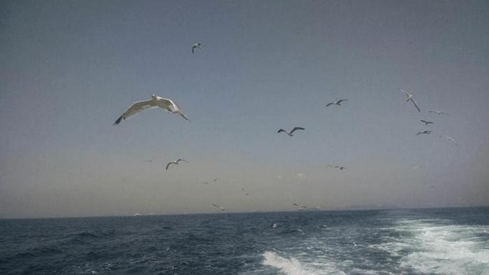 Ferry camino a las islas de los Príncipes