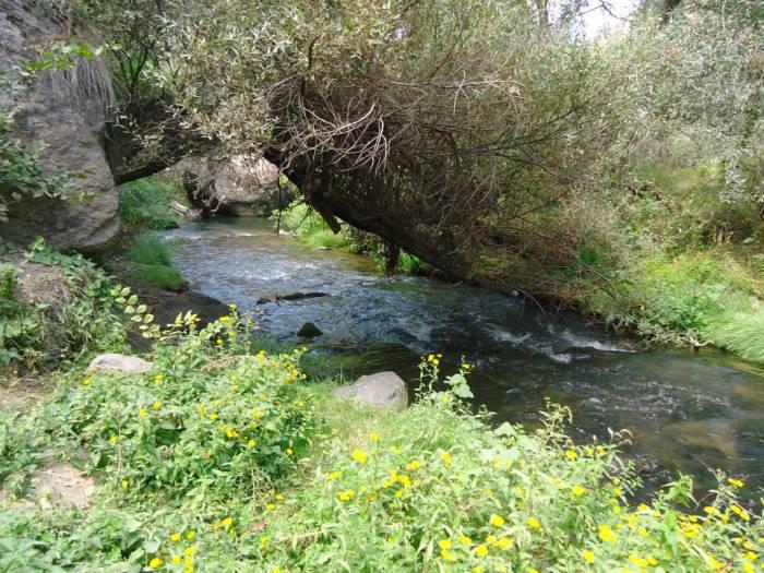 Cañón del río Ilhara