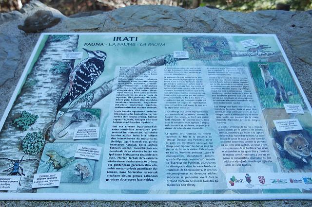 Cartel informativo de la fauna de la Selva de Irati