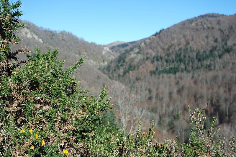 Estampas de otoño en Navarra