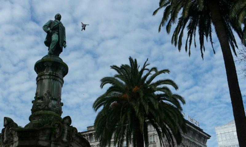 Palmeras en A Coruña