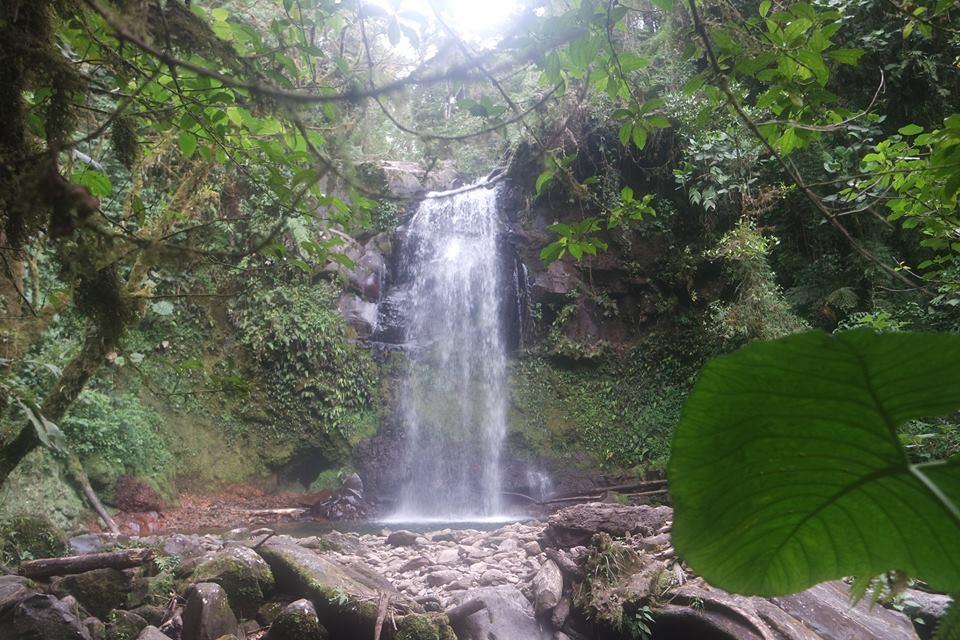 Cascadas de Boquete
