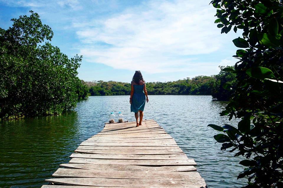 Manglares, isla Grande, islas del Rosario, Colombia