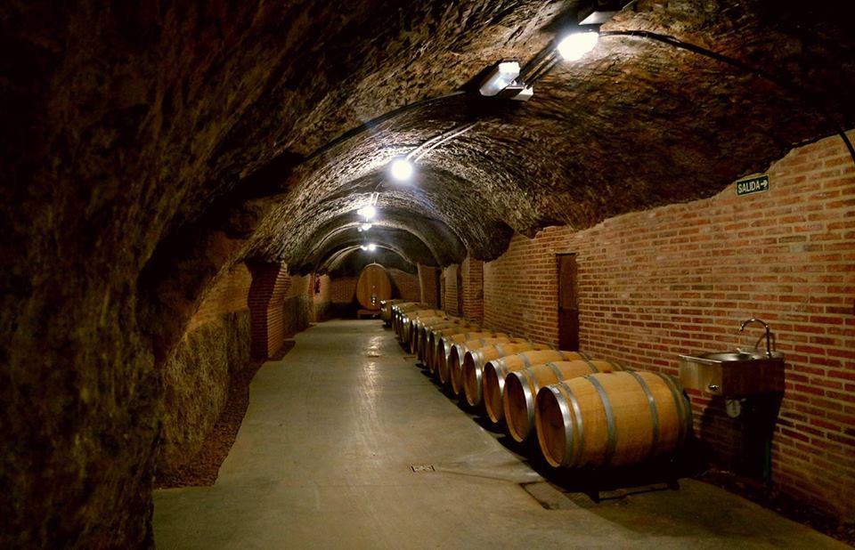 Bodegas Campo Eliseo, bodegas de vino en Valladolid