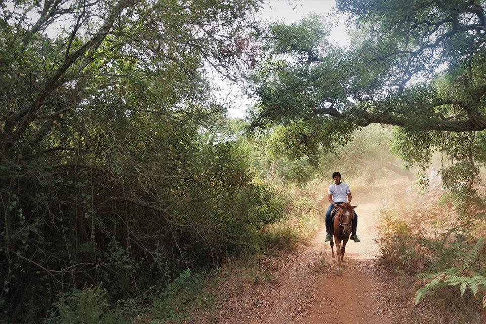 Ruta a caballo por El Alentejo