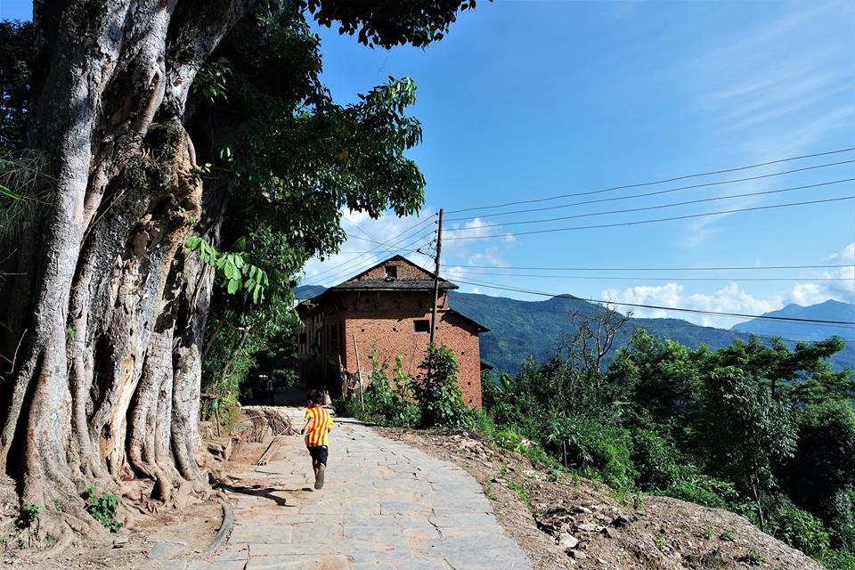 De paseo por Bandipur