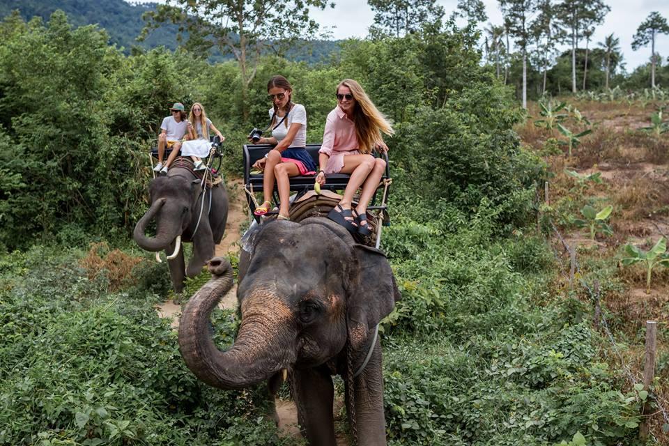 Montando en elefante en Tailandia