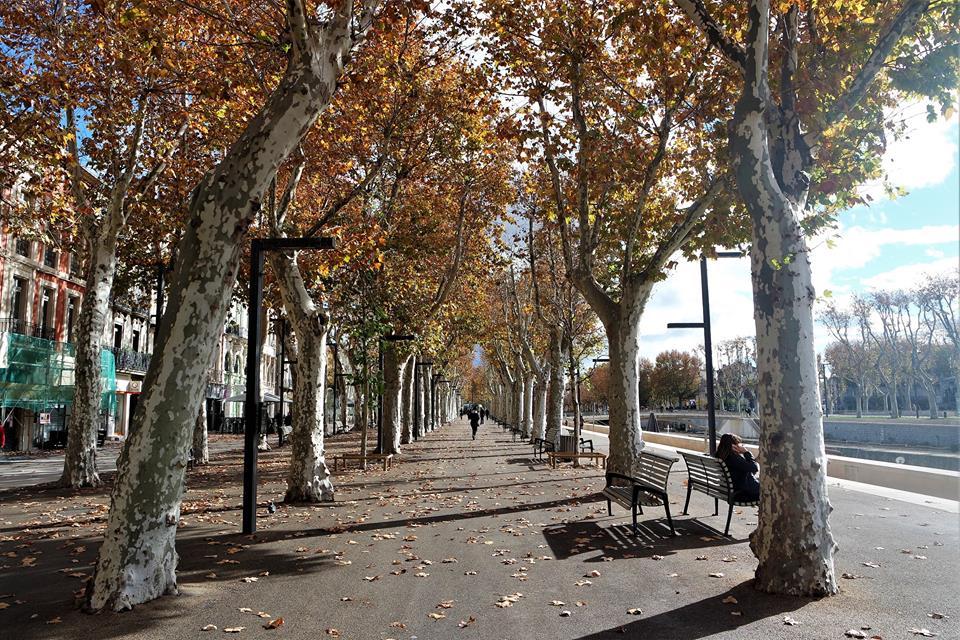 Paseo de Narbona