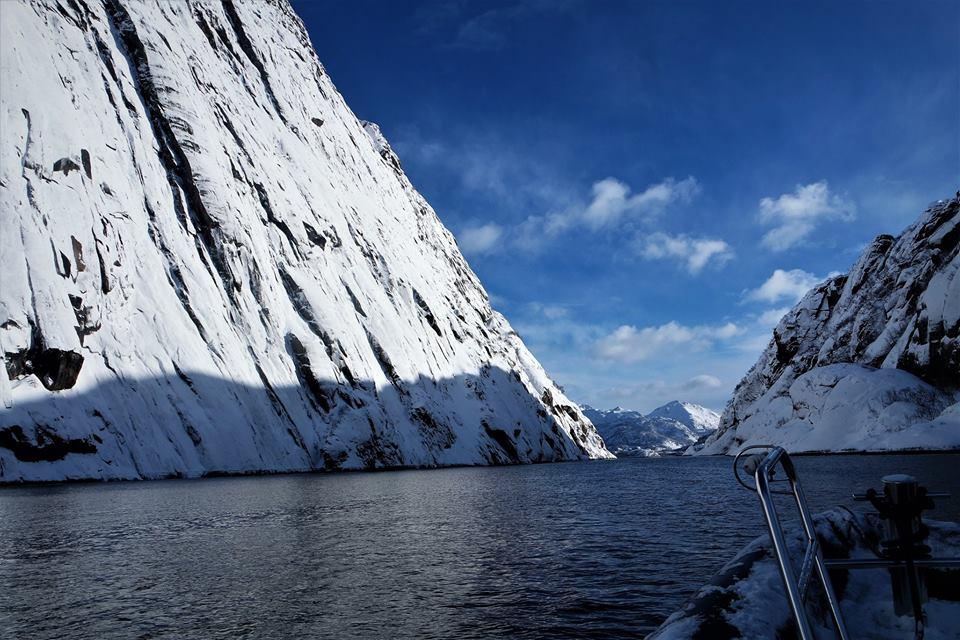 Fiordo de las islas Lofoten, safari de águilas marinas