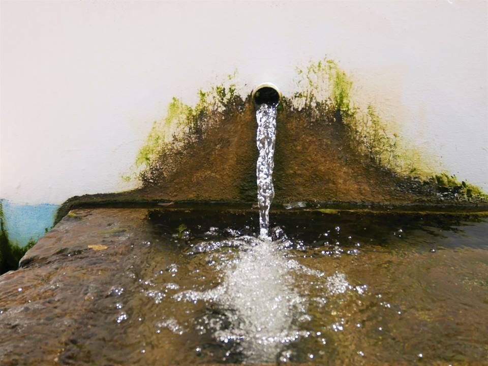 Fuente Salada,Medina Sidonia