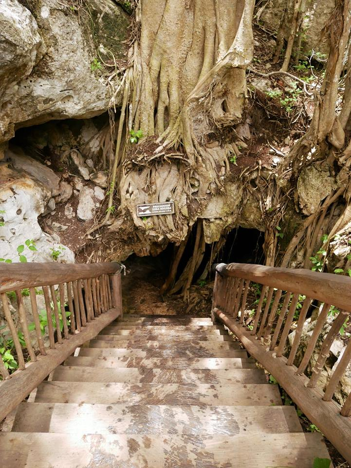 Entrada al cenote Cascabel