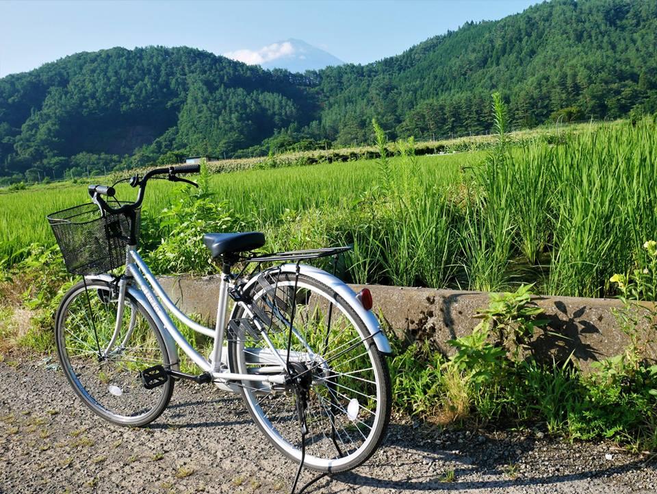 En bicicleta por el Fuji