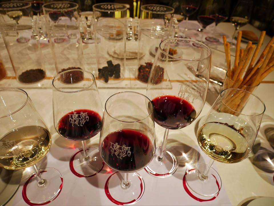 Cata de vinos en bodegas Ontañón