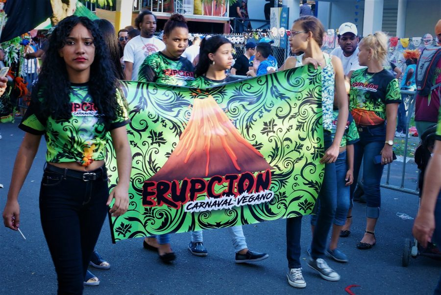cartel de comparsa, carnaval de La Vega