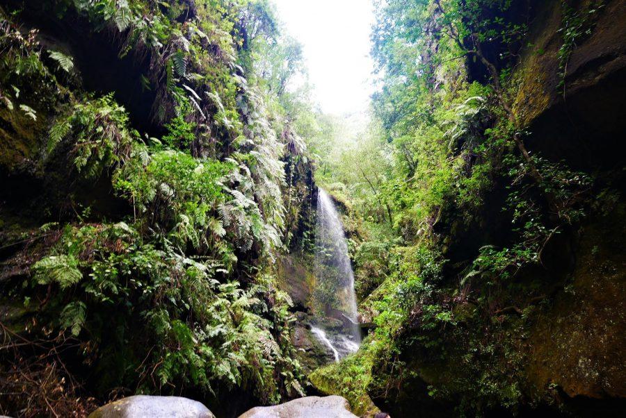 Cascada del Bosque de Los Tilos