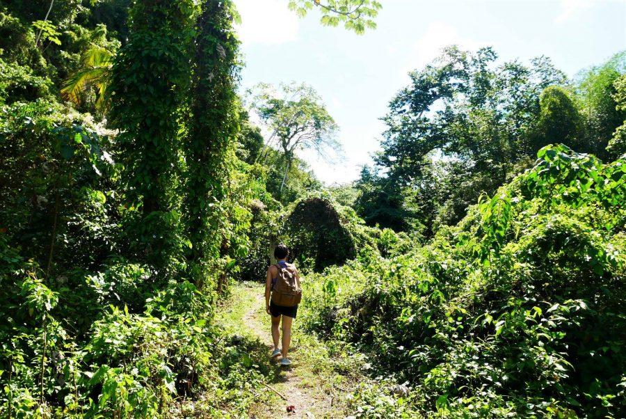 Camino de la cascada Lulu en República Dominicana