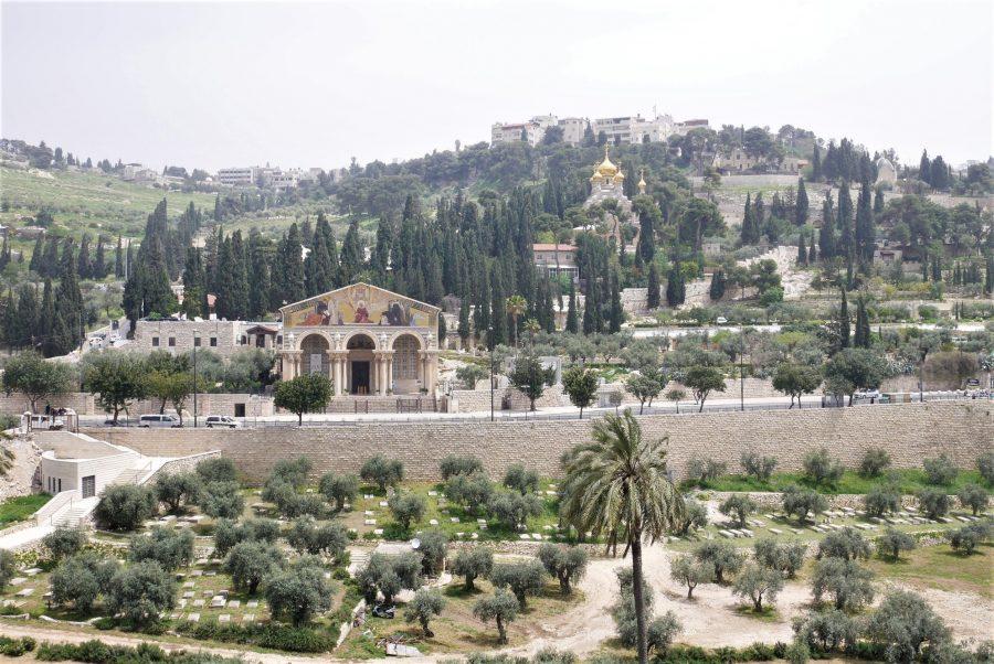 El Monte de los Olivos, guía de Jerusalén
