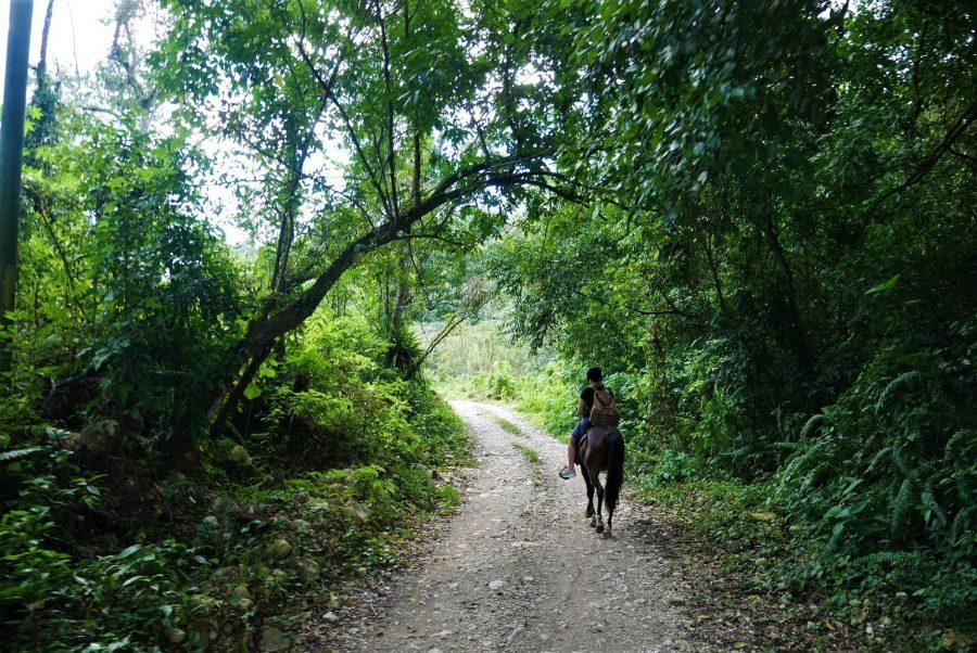 A caballo por Paraíso, razones para viajar a República Dominicana