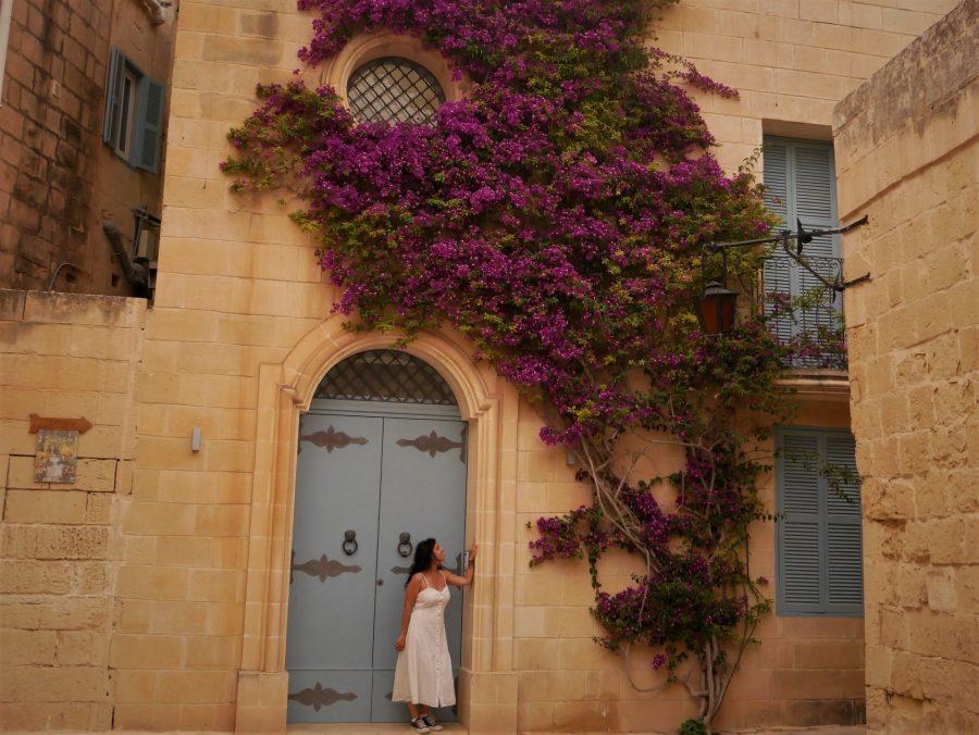 Casas y palacios de Mdina, Malta