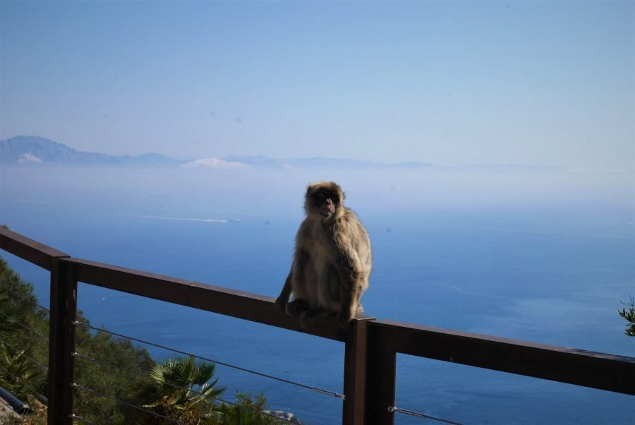 Vistas desde el Skywalk de Gibraltar, África al fondo