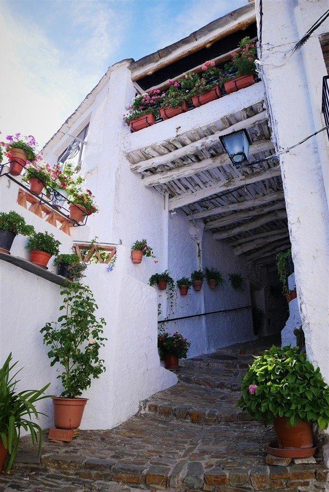 Tinao en Pitres, ruta en coche por la Alpujarra