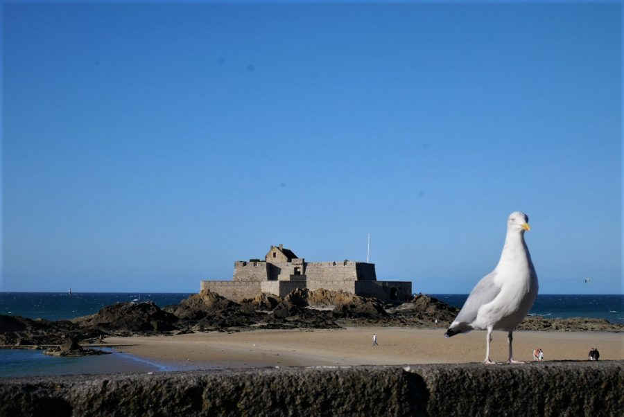 Qué ver en Saint-Malo, La Bretaña francesa