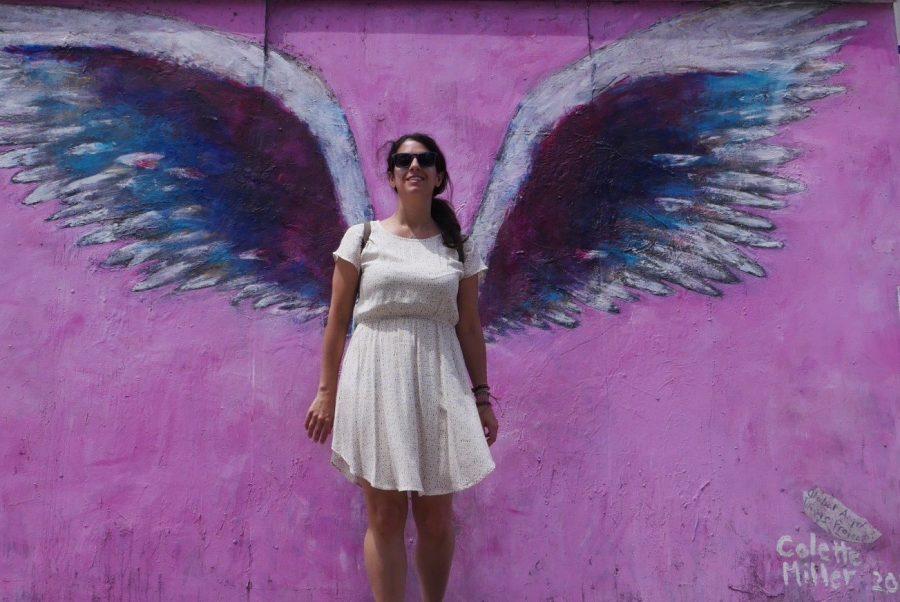 Mural de las Alas rosas de Colette Miller