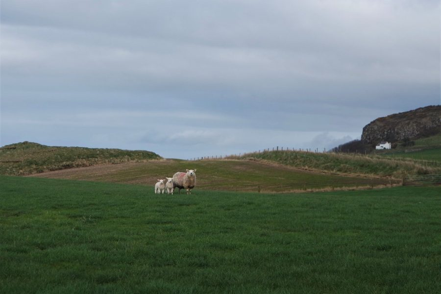 Paisajes de Irlanda del Norte