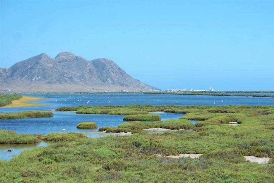 Las Salinas, Cabo de Gata