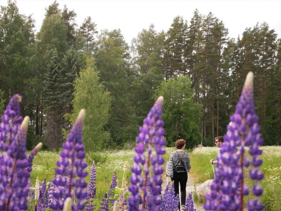 Senderismo en Finlandia Central