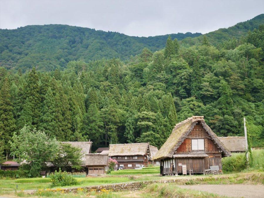 Casas típicas en Shirakawa-go Japón