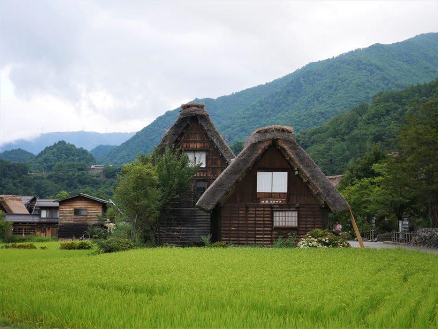 Granjas con tejados tradicionales, qué ver en Shirakawa-go