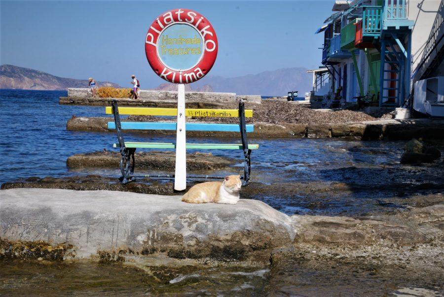 Gato en Klima, qué ver en Milos Grecia