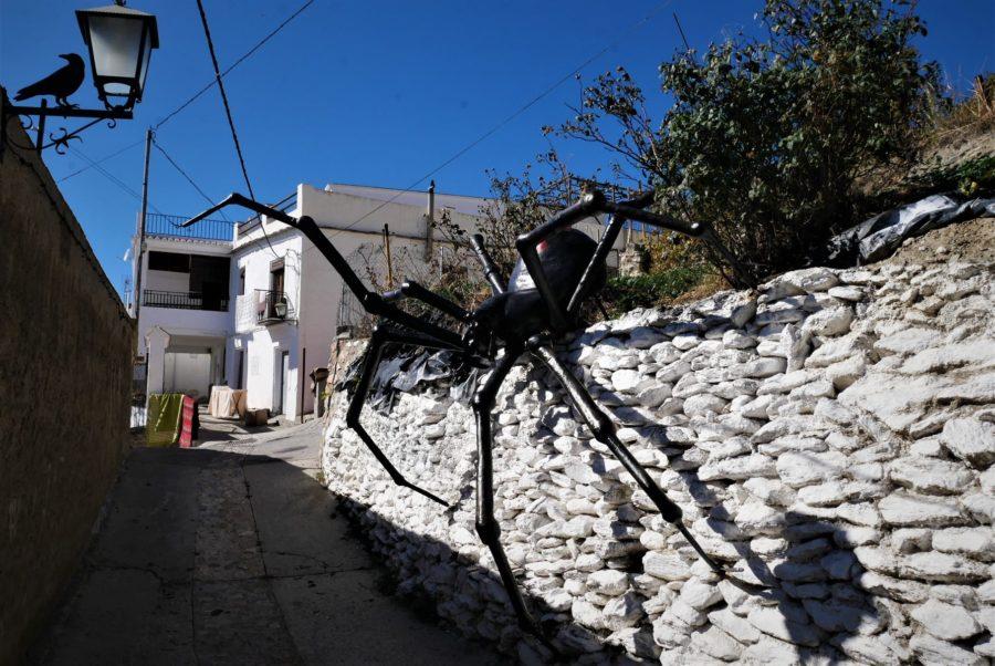 Araña Tejedora de Sueños en Soportújar