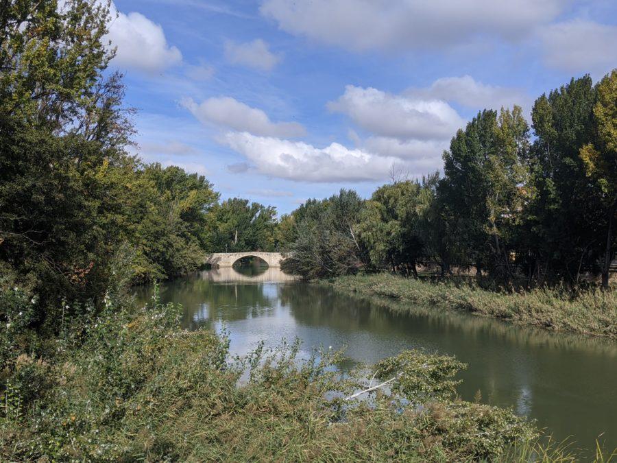 Ribera del río Carrión en Palencia