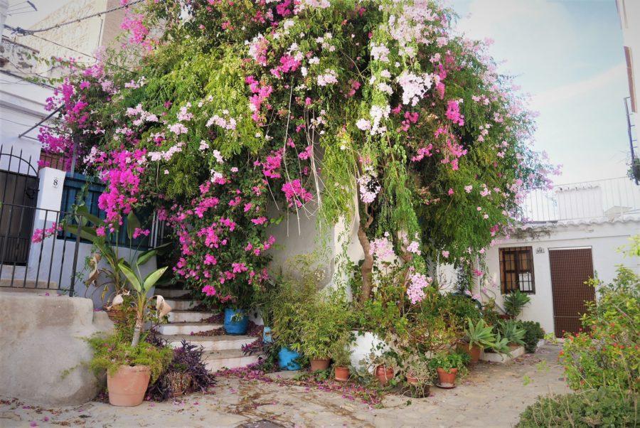 Pueblos mágicos de Andalucía