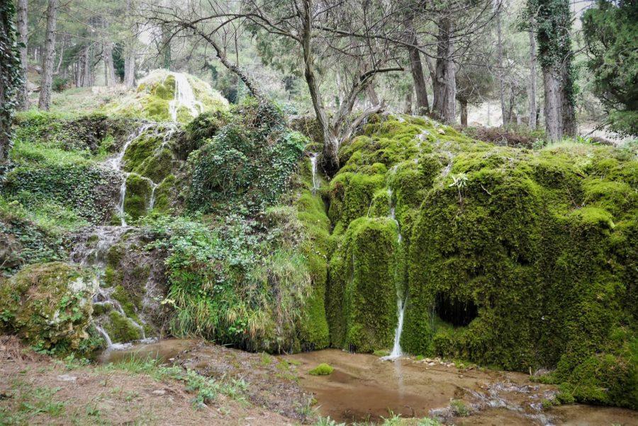 Fuente Tejera, Teruel