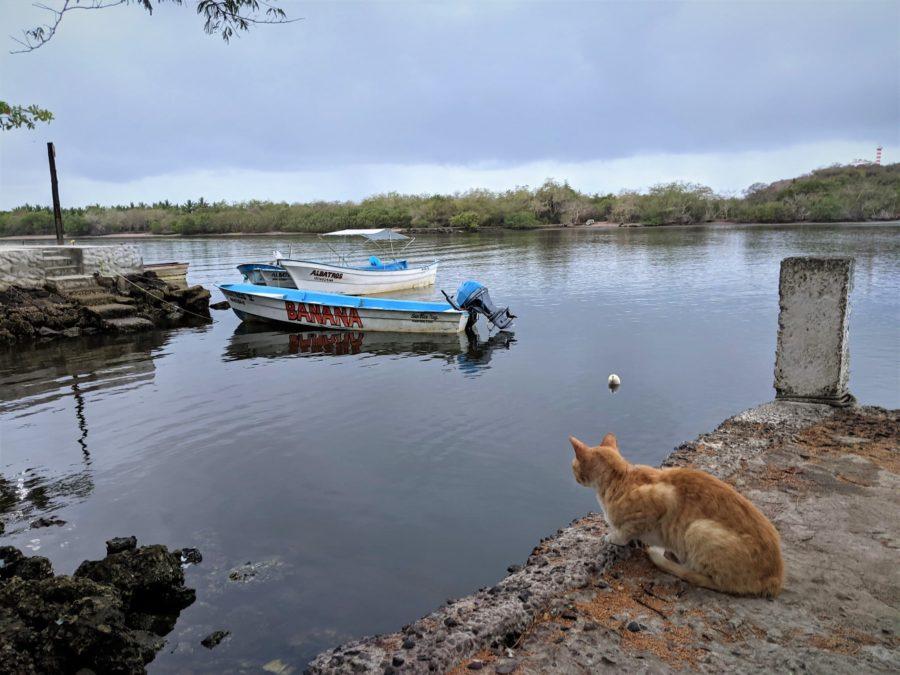 Barcas en San Blas, Nayarit