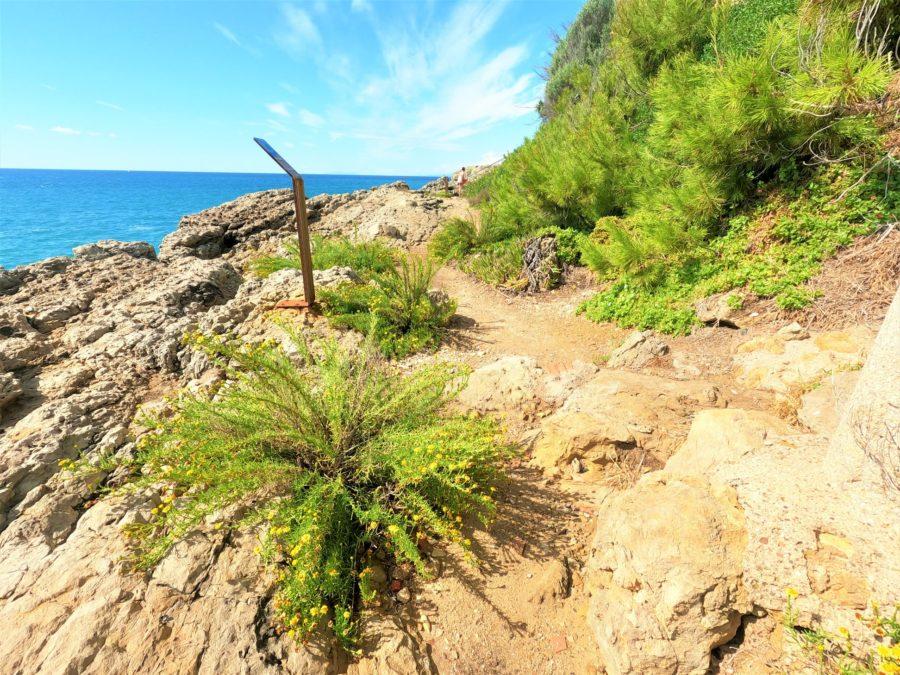 Senda litoral, el Camino de Ronda de Salou