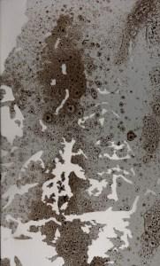 Paris14-texture3