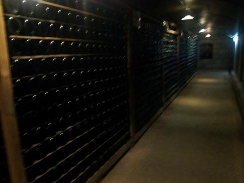 ワイナリー見学,福岡県久留米市,おすすめ観光スポット,穴場,人気,自然,巨峰ワイン,お土産,美味しい,