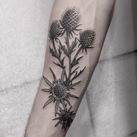 Tatouage chardon plante fait par Julien