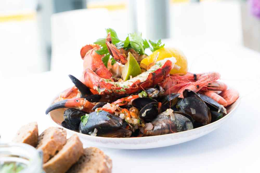 shrimp salad on plate