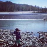 il fiume 2