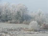 Frost on the Pré de La Croix