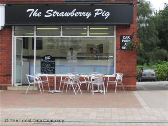 Strawberry Pigs