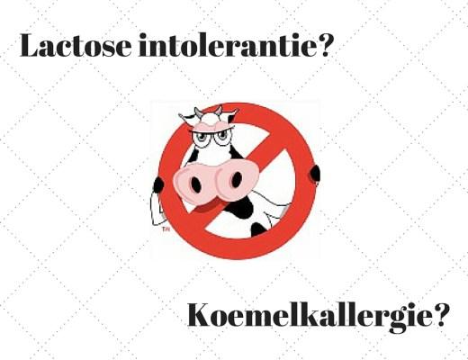 verschil koemelkallergie en lactose intolerantie